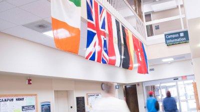 Various international flags hang in Davidson-Davie Brooks Student Center
